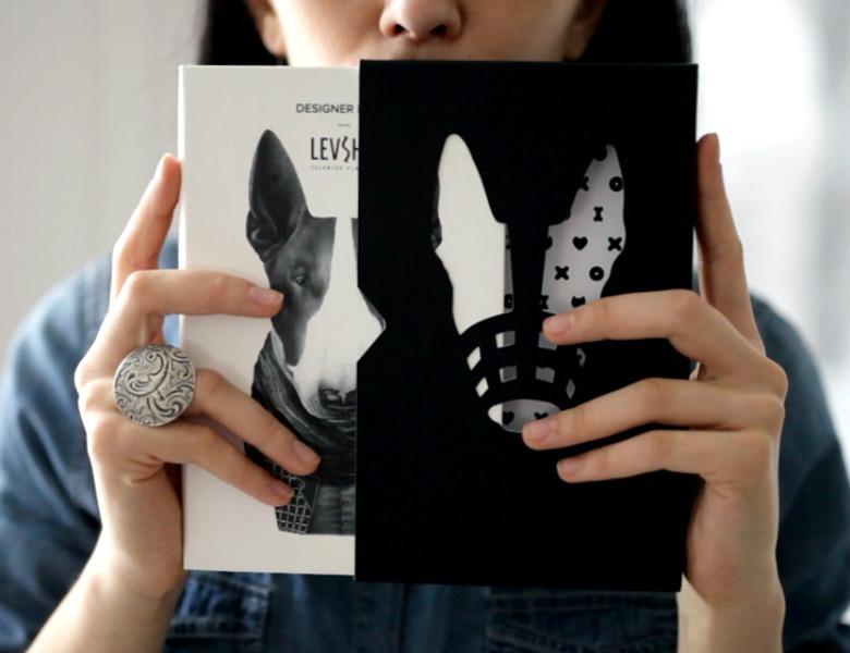 levsha diary