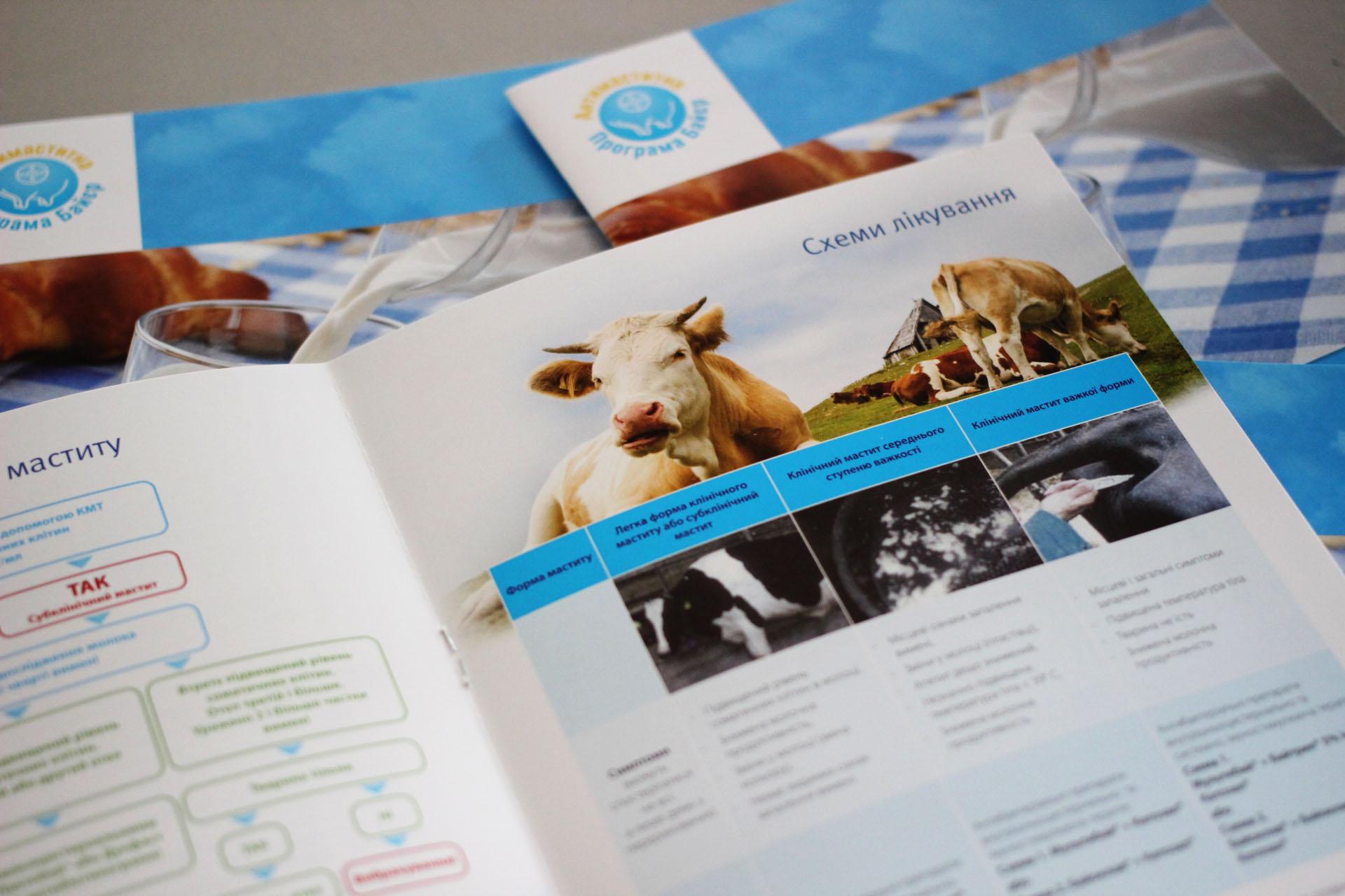 Печать брошюр каталогов